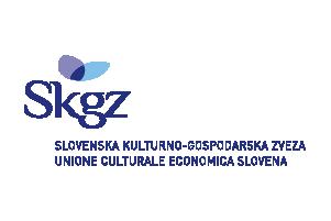 47_SKGZ